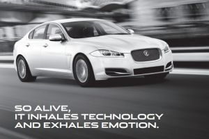 Jaguar Australia - Click for More...